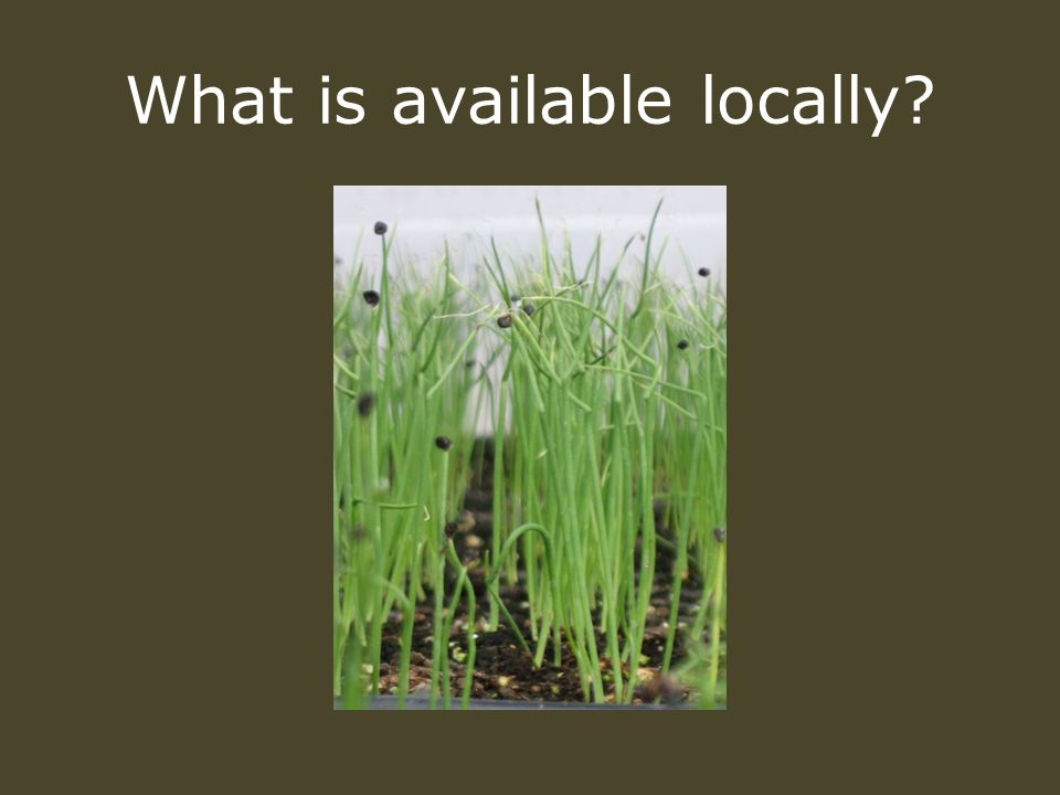 What is available locally