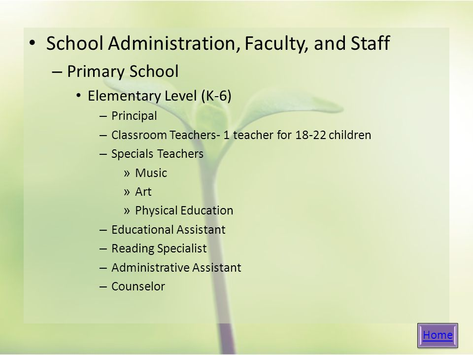 School Administration, Faculty, and Staff – Primary School Elementary Level (K-6) – Principal – Classroom Teachers- 1 teacher for children – Specials Teachers » Music » Art » Physical Education – Educational Assistant – Reading Specialist – Administrative Assistant – Counselor Home