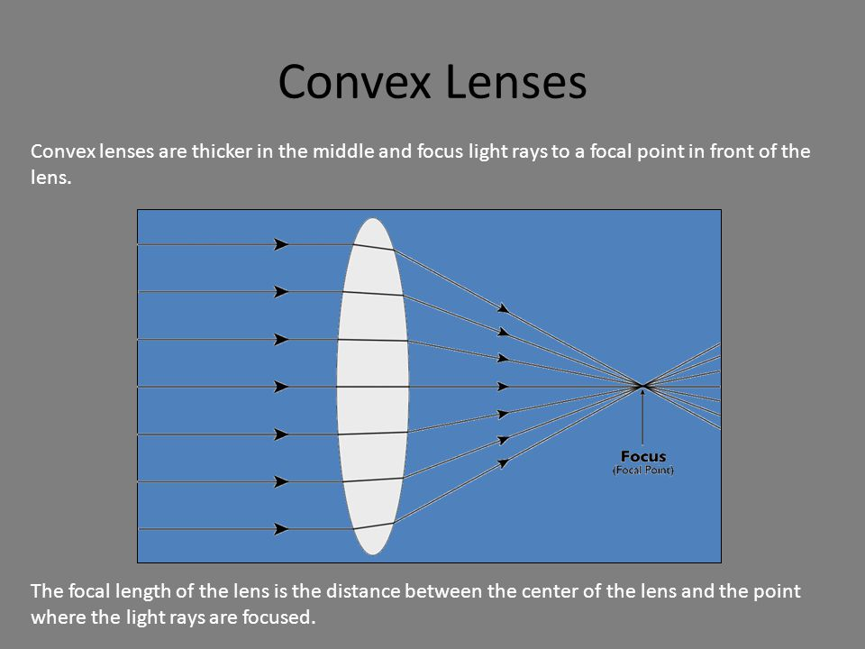 Convex Lenses Convex lenses are thicker in the middle and focus light rays to a focal point in front of the lens.