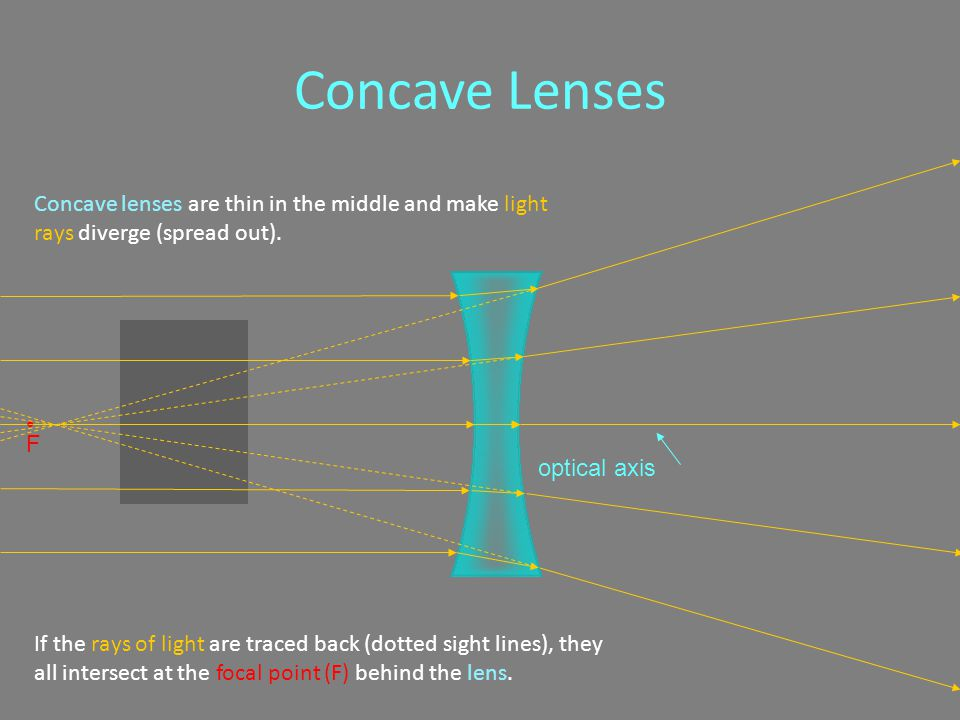 Concave Lenses Concave lenses are thin in the middle and make light rays diverge (spread out).