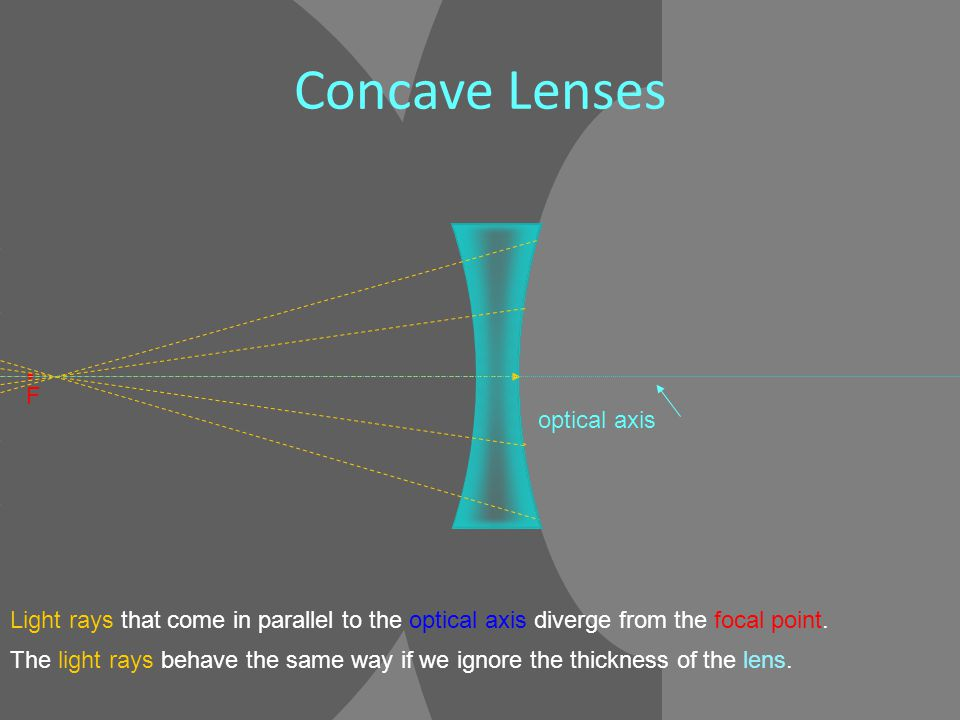 F Light rays that come in parallel to the optical axis diverge from the focal point.