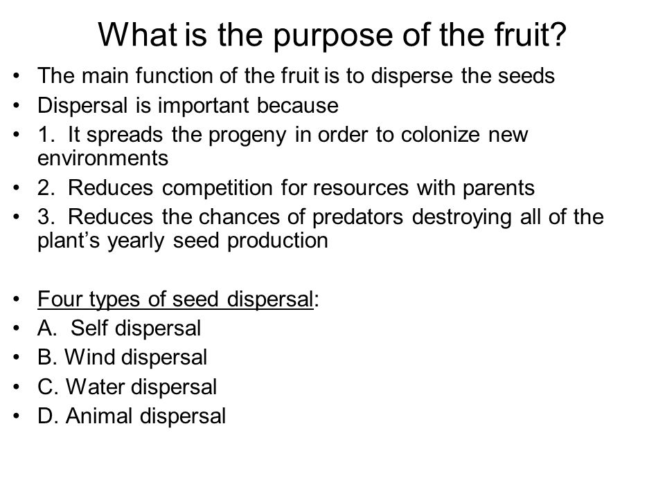 importance of fruit and seed dispersal