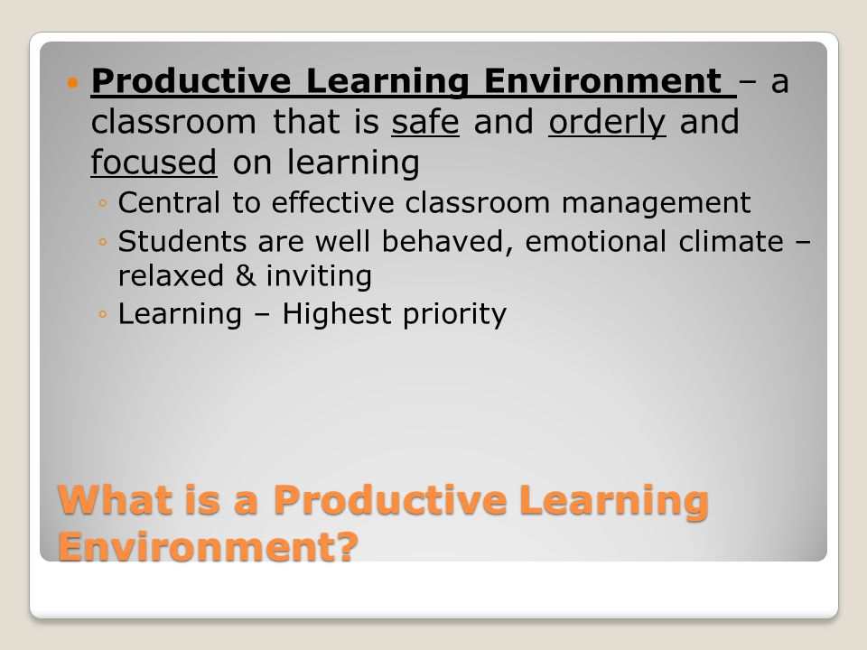 What is a Productive Learning Environment.