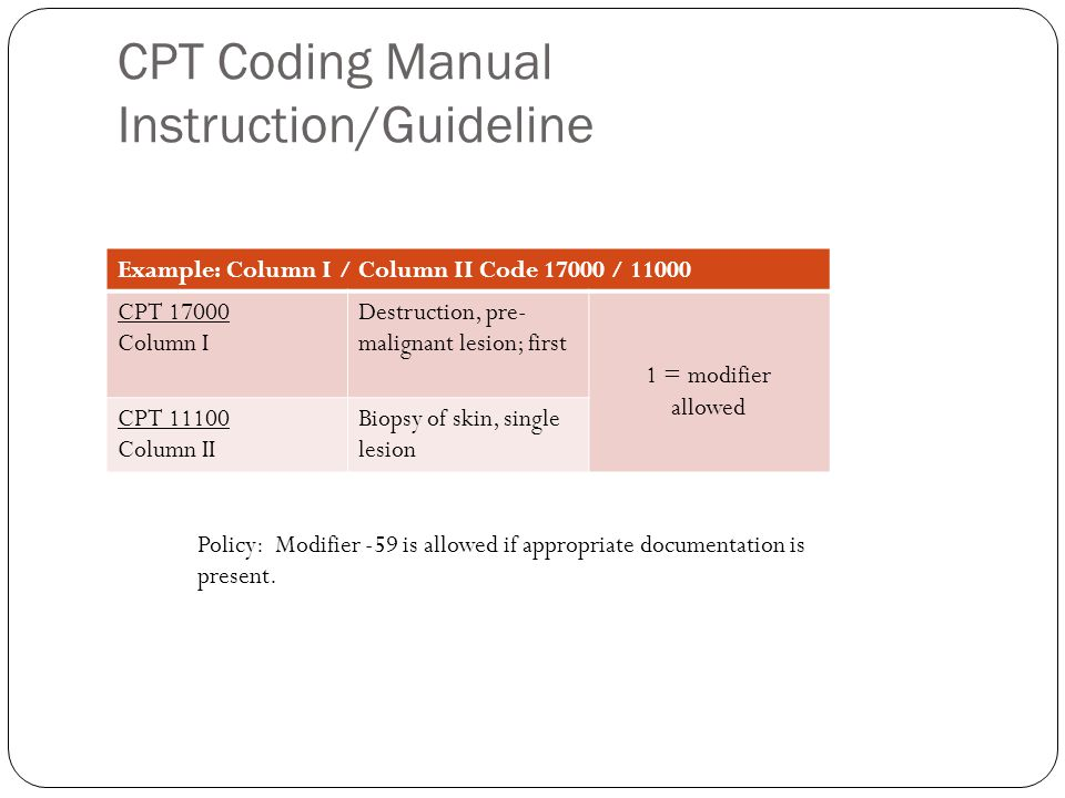 presented by lori dafoe cpc how to use the national correct coding rh slideplayer com cpt coding manual ebook cpt coding manual online