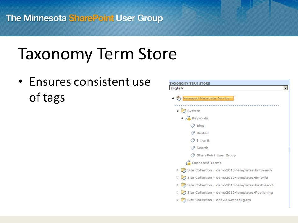 Taxonomy Term Store Ensures consistent use of tags