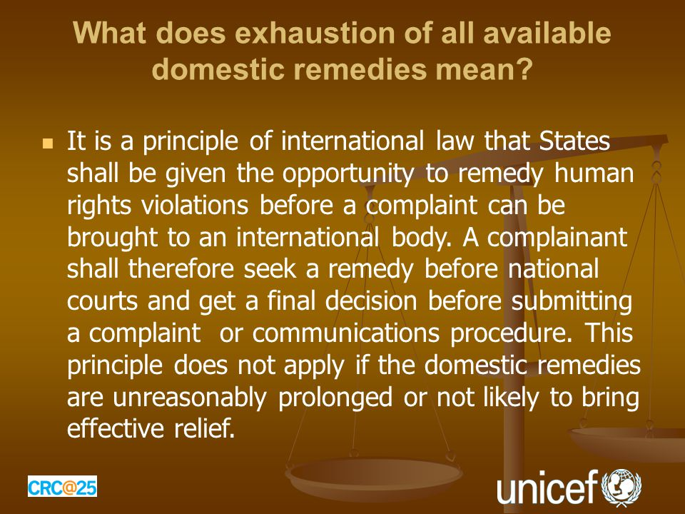 What does exhaustion of all available domestic remedies mean.