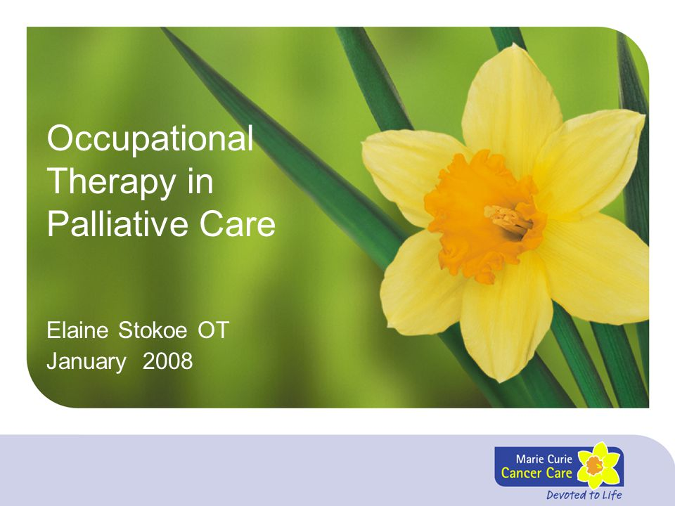 Occupational Therapy in Palliative Care Elaine Stokoe OT January 2008
