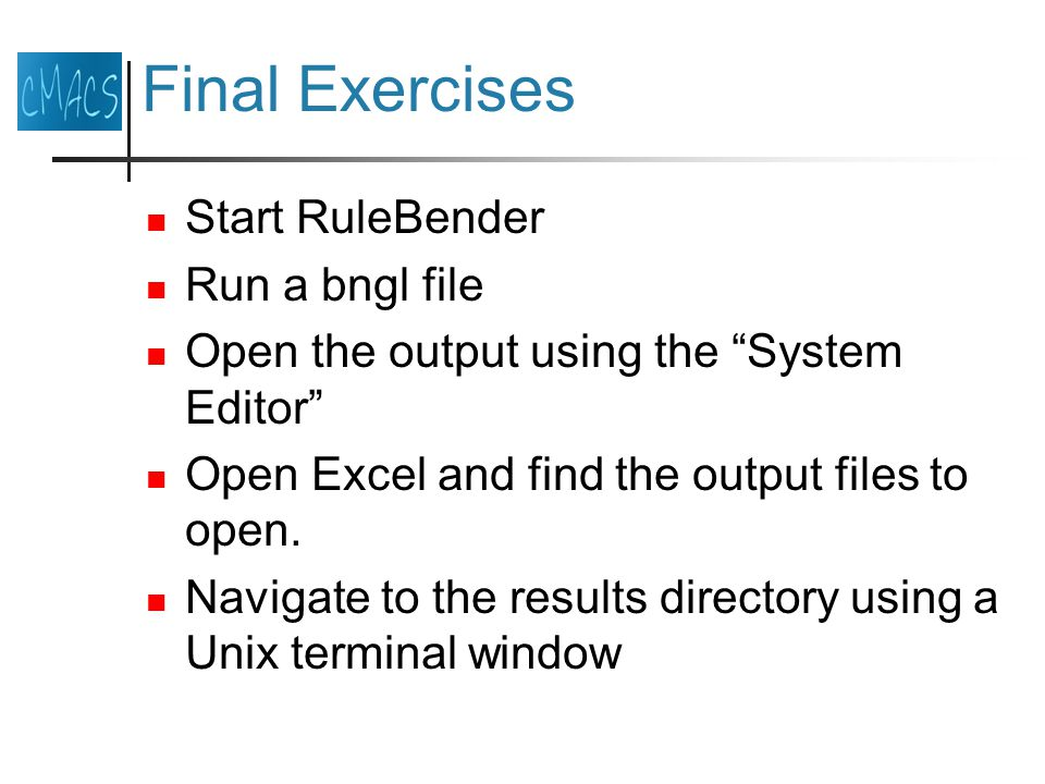 Final Exercises Start RuleBender Run a bngl file Open the output using the System Editor Open Excel and find the output files to open.