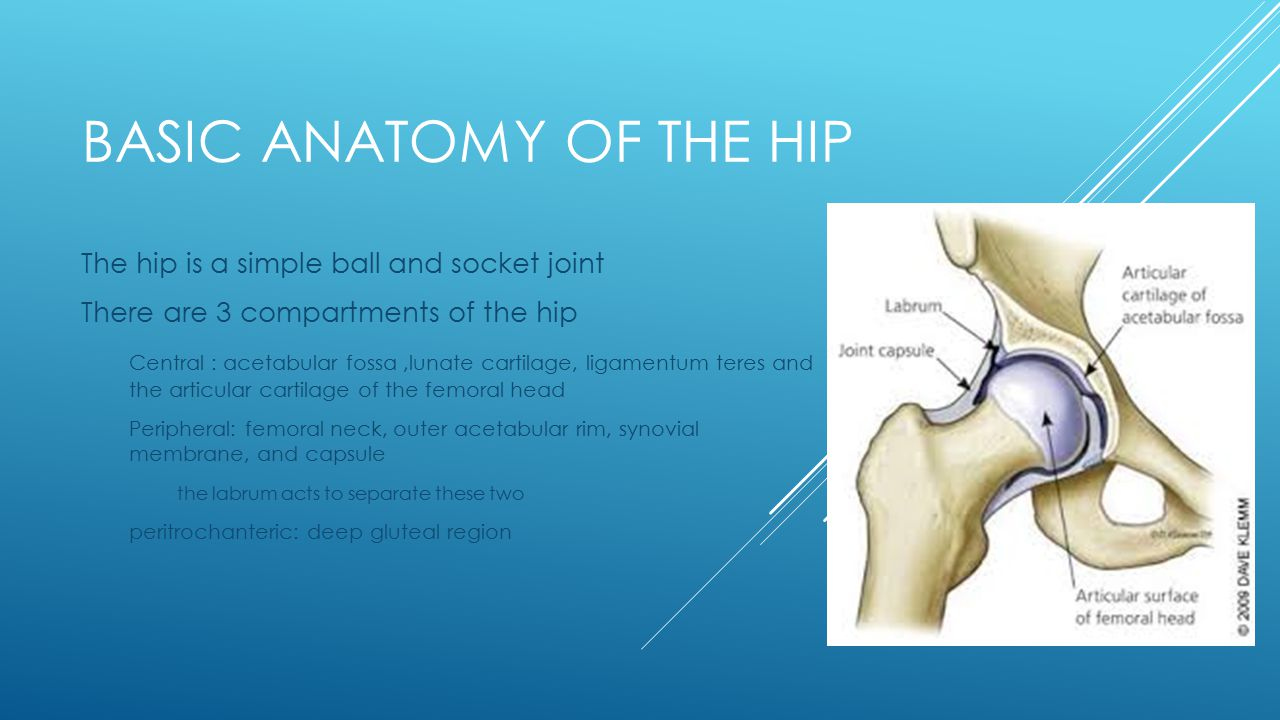 MANAGEMENT OF CHONDRAL LESIONS OF THE HIP Leigh Brezenoff