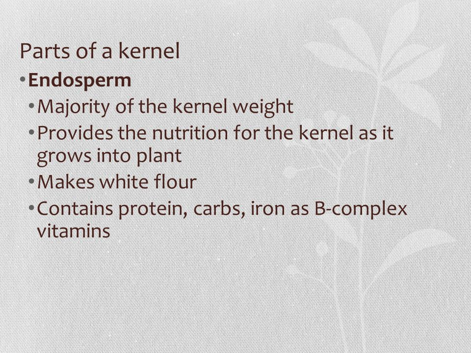 Endosperm Majority of the kernel weight Provides the nutrition for the kernel as it grows into plant Makes white flour Contains protein, carbs, iron as B-complex vitamins
