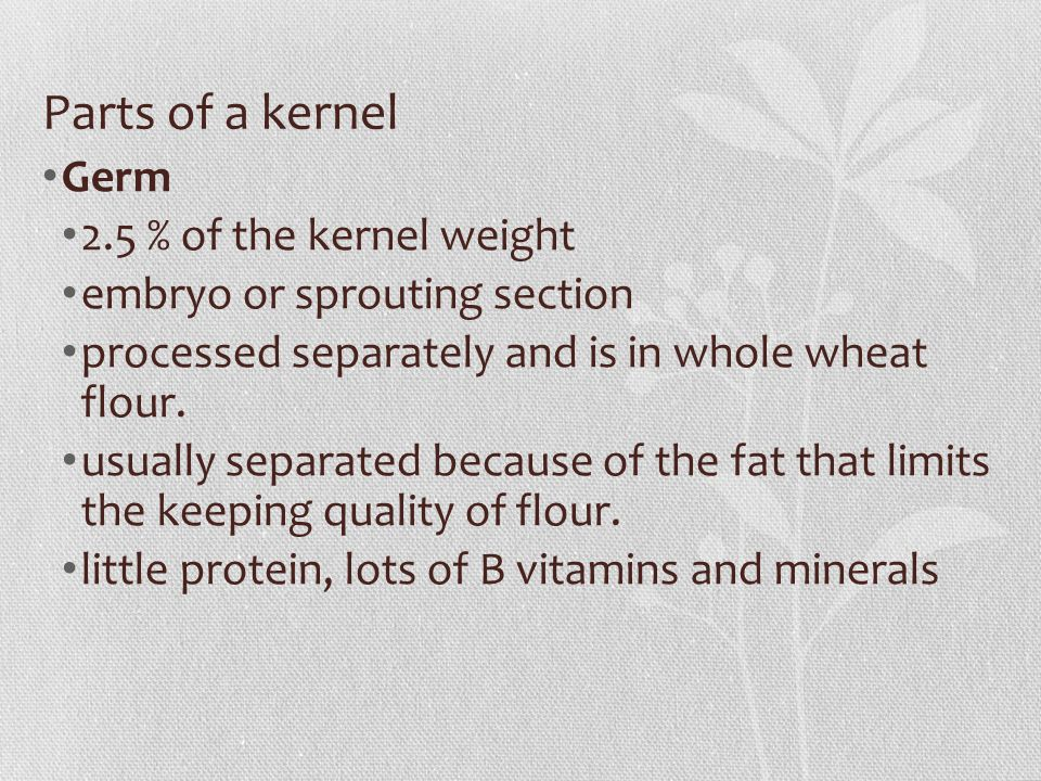 Parts of a kernel Germ 2.5 % of the kernel weight embryo or sprouting section processed separately and is in whole wheat flour.