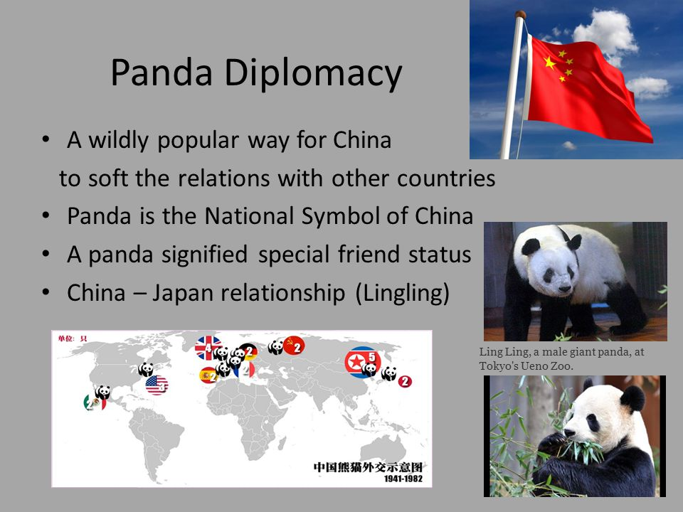 The Panda The Symbol Of China The Giant Panda Ailuropoda