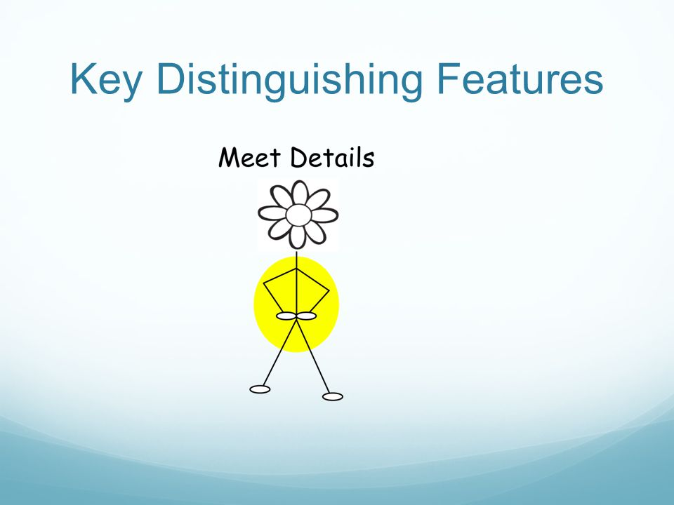 Key Distinguishing Features