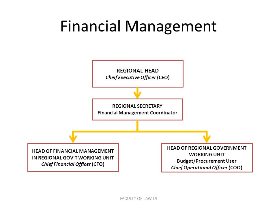 Financial Management HEAD OF FINANCIAL MANAGEMENT IN REGIONAL GOV'T WORKING UNIT Chief Financial Officer (CFO) HEAD OF REGIONAL GOVERNMENT WORKING UNIT Budget/Procurement User Chief Operational Officer (COO) REGIONAL HEAD Cheif Executive Officer (CEO) REGIONAL SECRETARY Financial Management Coordinator FACULTY OF LAW UI