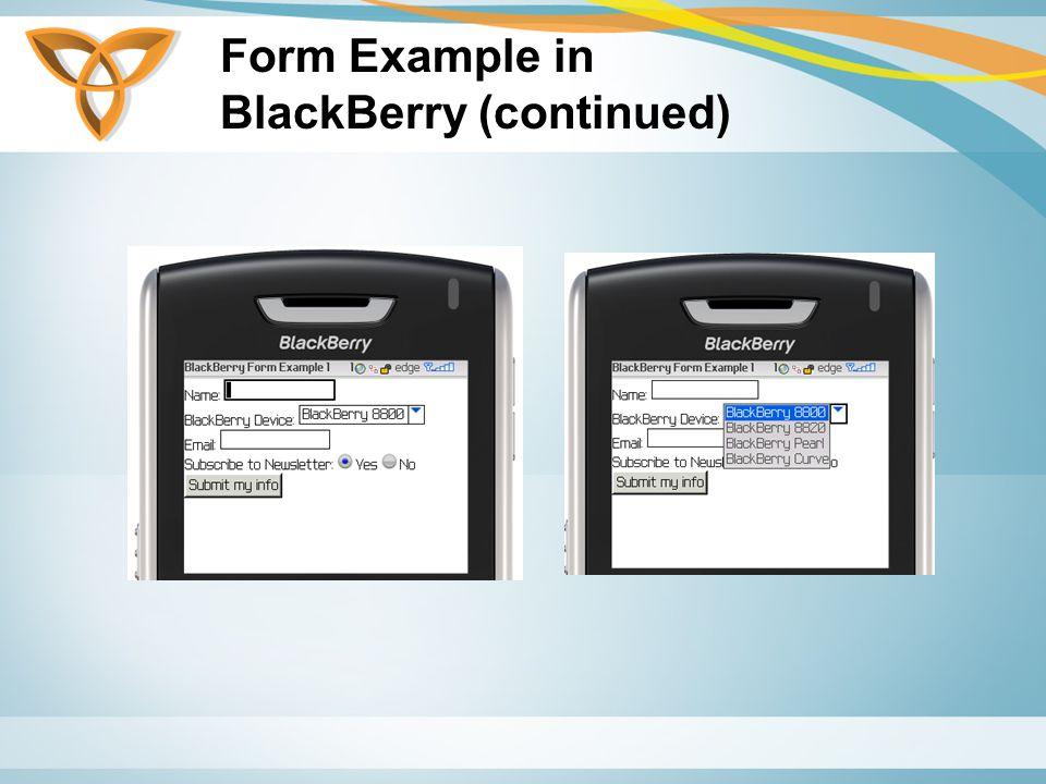 Form Example in BlackBerry (continued)