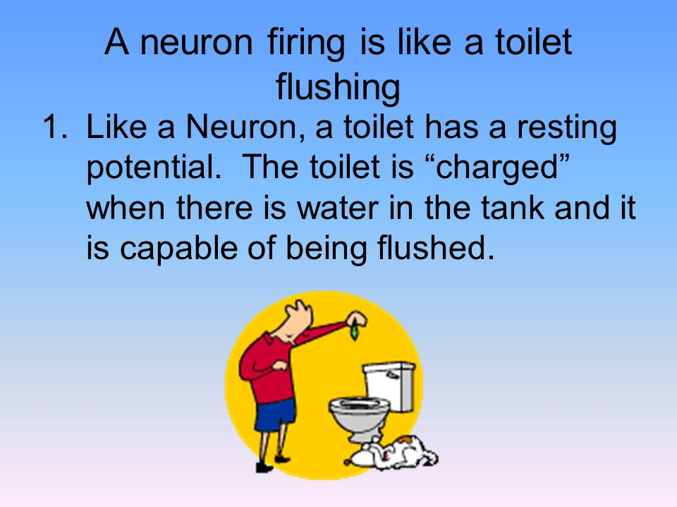 A neuron firing is like a toilet flushing 1.Like a Neuron, a toilet has a resting potential.