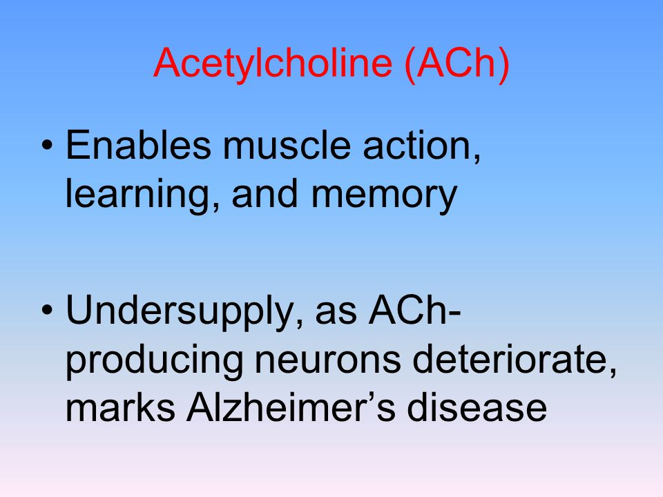 Acetylcholine (ACh) Enables muscle action, learning, and memory Undersupply, as ACh- producing neurons deteriorate, marks Alzheimer's disease