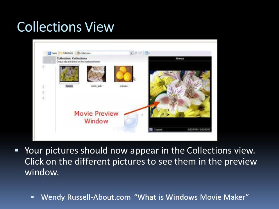 Collections View  Your pictures should now appear in the Collections view.