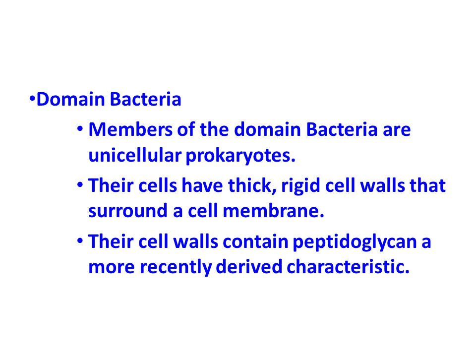 Domain Bacteria Members of the domain Bacteria are unicellular prokaryotes.