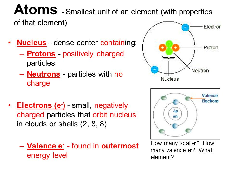 Atoms - Smallest unit of an element (with properties of that element) Nucleus - dense center containing: –Protons - positively charged particles –Neutrons - particles with no charge Electrons (e - ) - small, negatively charged particles that orbit nucleus in clouds or shells (2, 8, 8) –Valence e - - found in outermost energy level How many total e - .