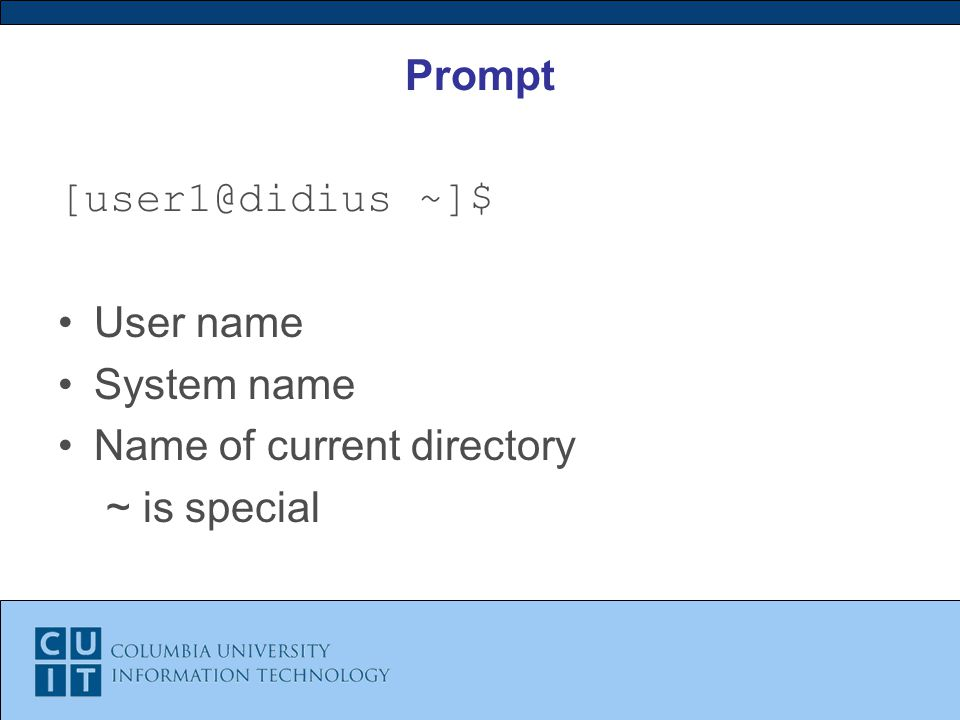 Prompt ~]$ User name System name Name of current directory ~ is special