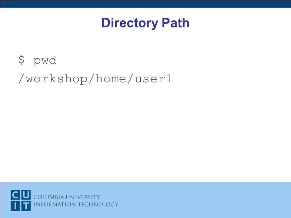 Directory Path $ pwd /workshop/home/user1