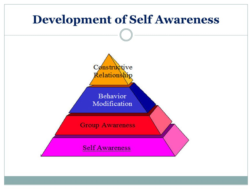 Development of Self Awareness