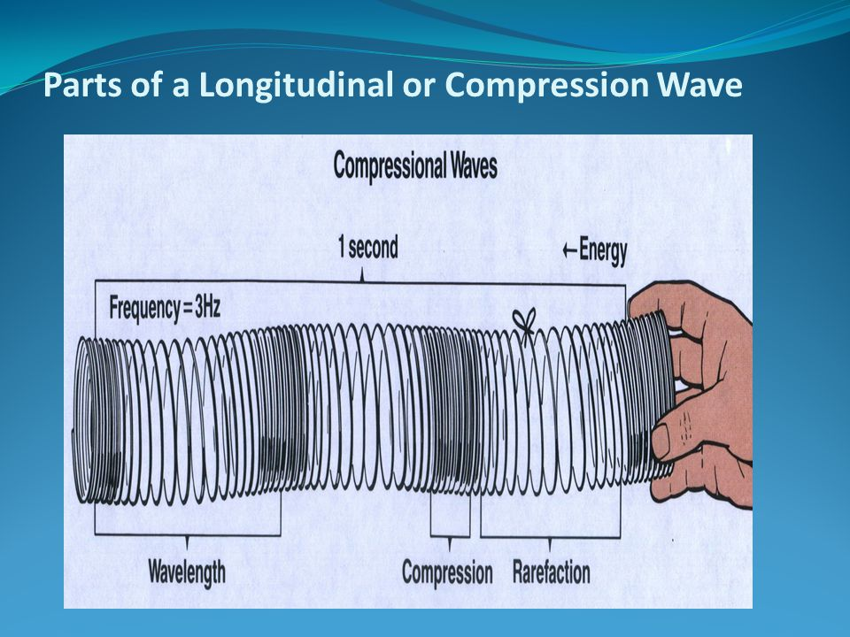 Parts of a Longitudinal or Compression Wave