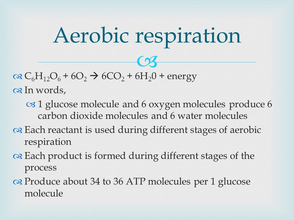   C 6 H 12 O 6 + 6O 2  6CO 2 + 6H energy  In words,  1 glucose molecule and 6 oxygen molecules produce 6 carbon dioxide molecules and 6 water molecules  Each reactant is used during different stages of aerobic respiration  Each product is formed during different stages of the process  Produce about 34 to 36 ATP molecules per 1 glucose molecule Aerobic respiration