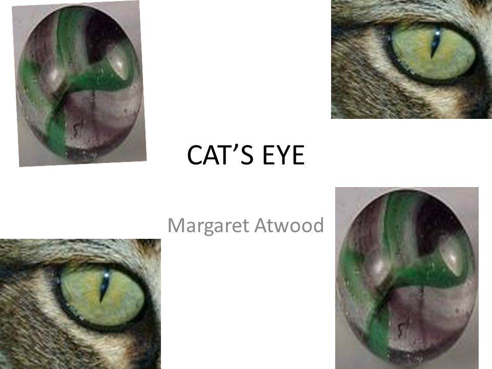 Cats Eye Margaret Atwood The Author Like Risley Atwood Is The