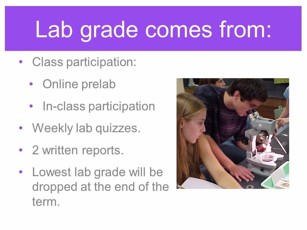 Lab grade comes from: Class participation: Online prelab In-class participation Weekly lab quizzes.