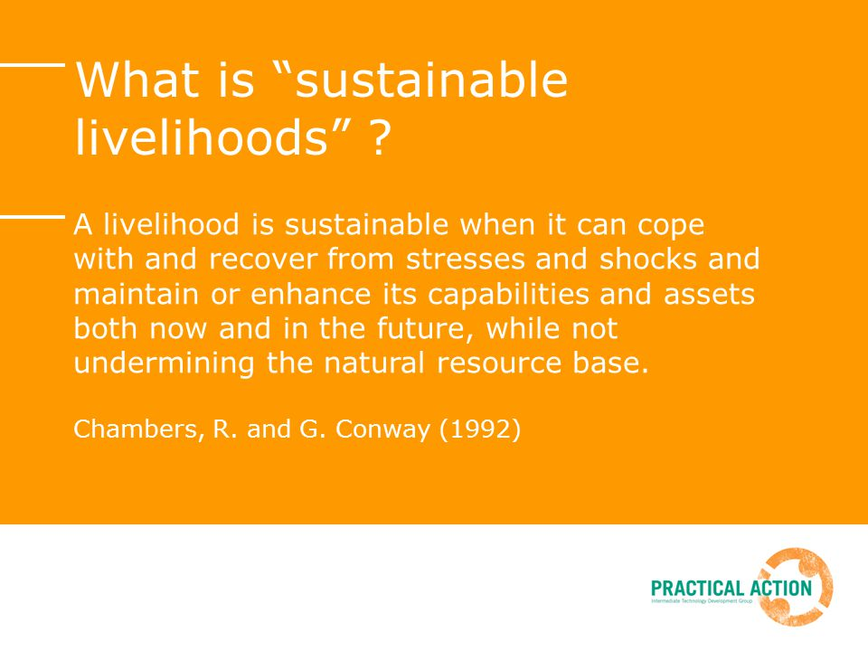 What is sustainable livelihoods .