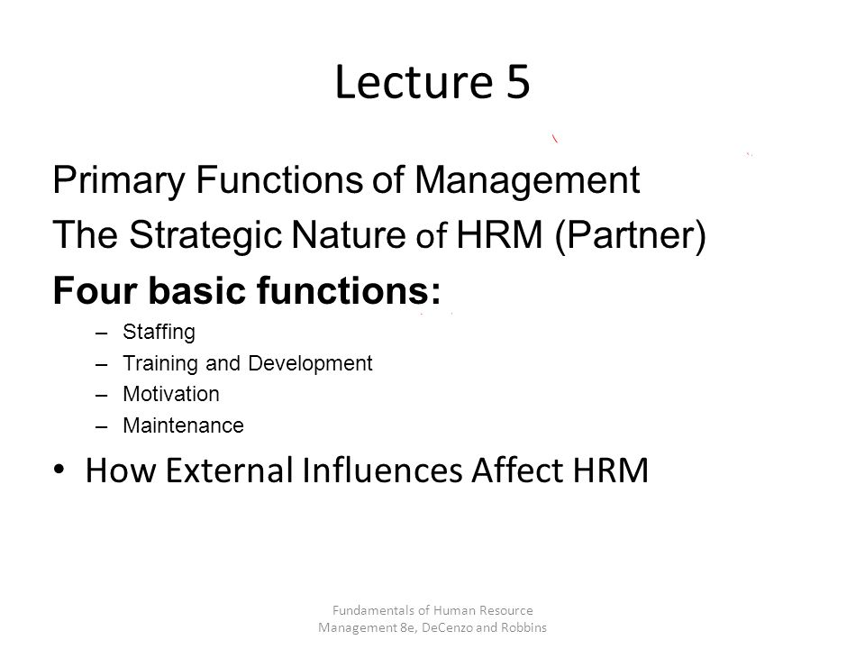 Lecture 5 Primary Functions of Management The Strategic Nature of HRM (Partner) Four basic functions: –Staffing –Training and Development –Motivation –Maintenance How External Influences Affect HRM Fundamentals of Human Resource Management 8e, DeCenzo and Robbins
