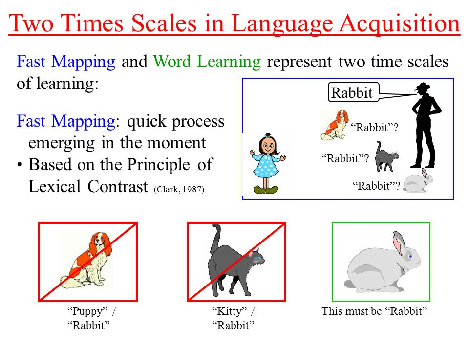 Real-Time Dynamics of Language Acquisition in Two-Year-Old Children ...