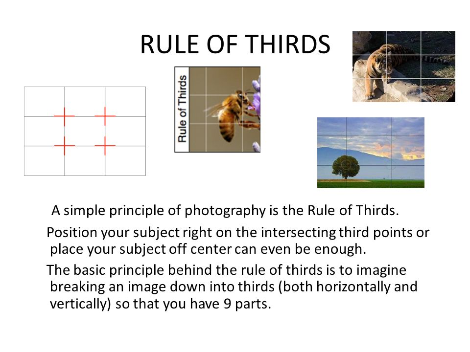 RULE OF THIRDS A simple principle of photography is the Rule of Thirds.