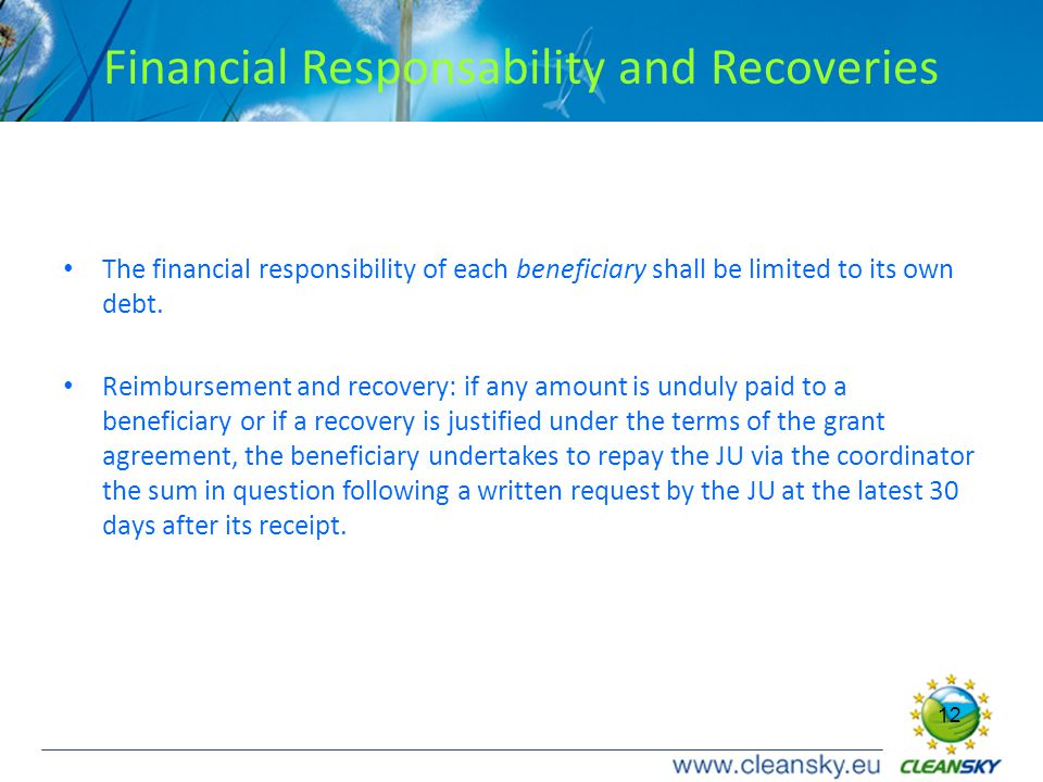 12 Financial Responsability and Recoveries The financial responsibility of each beneficiary shall be limited to its own debt.