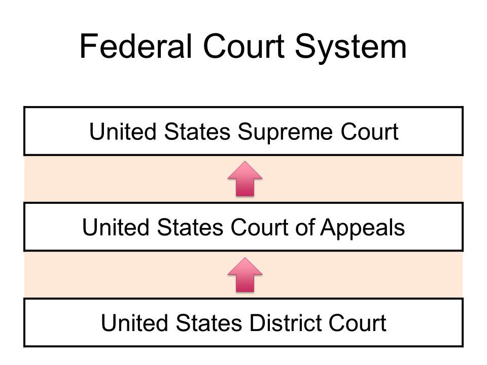Federal Court System United States Supreme Court United States Court of Appeals United States District Court