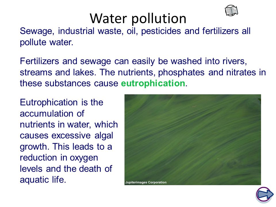 Water pollution Fertilizers and sewage can easily be washed into rivers, streams and lakes.