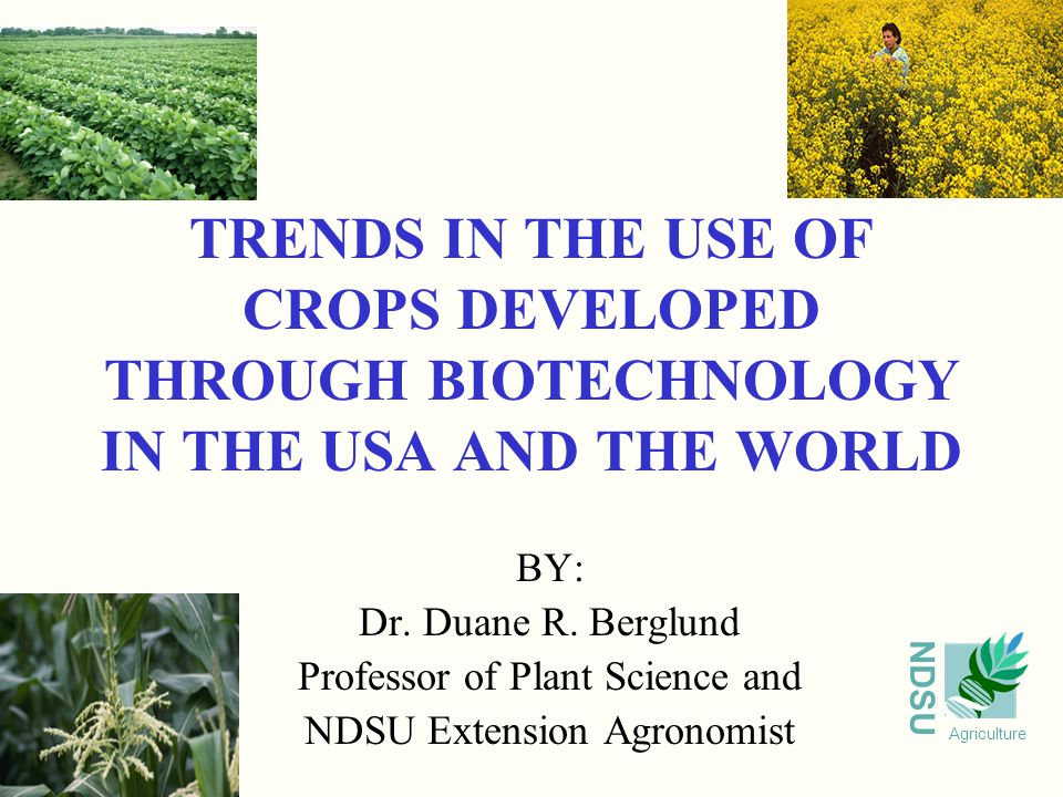 NDSU Agriculture TRENDS IN THE USE OF CROPS DEVELOPED THROUGH BIOTECHNOLOGY IN THE USA AND THE WORLD BY: Dr.