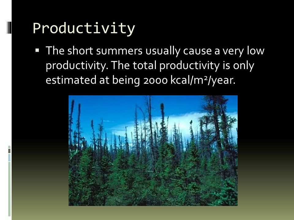 Productivity  The short summers usually cause a very low productivity.