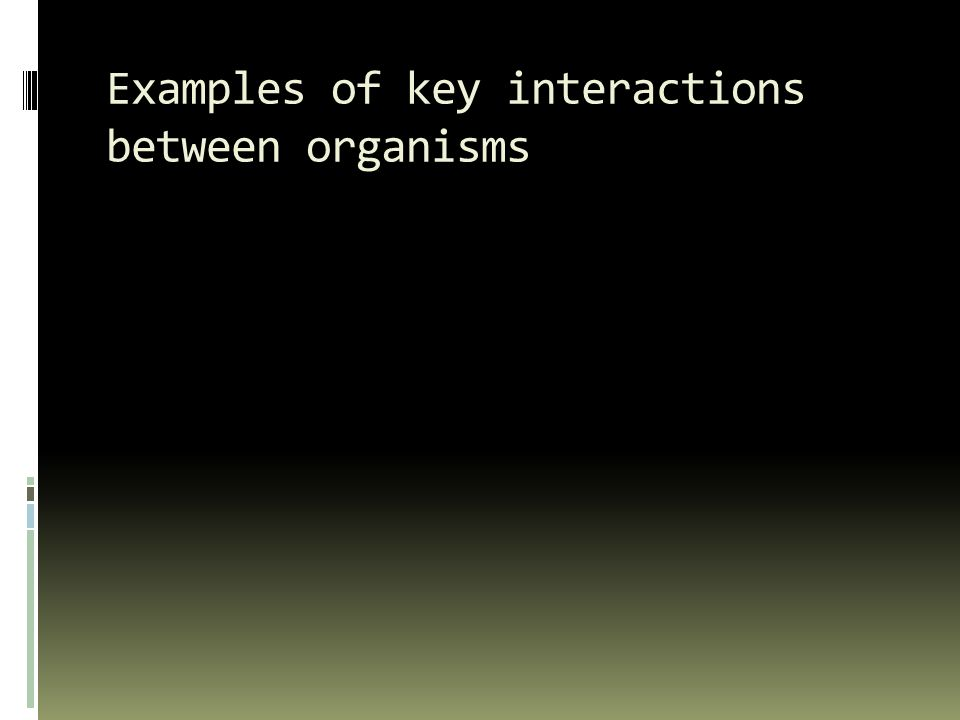 Examples of key interactions between organisms