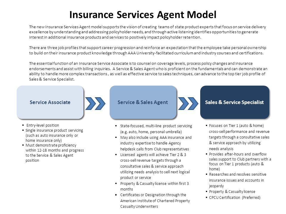Insurance Services Agent Model Insurance Service Associate Senior