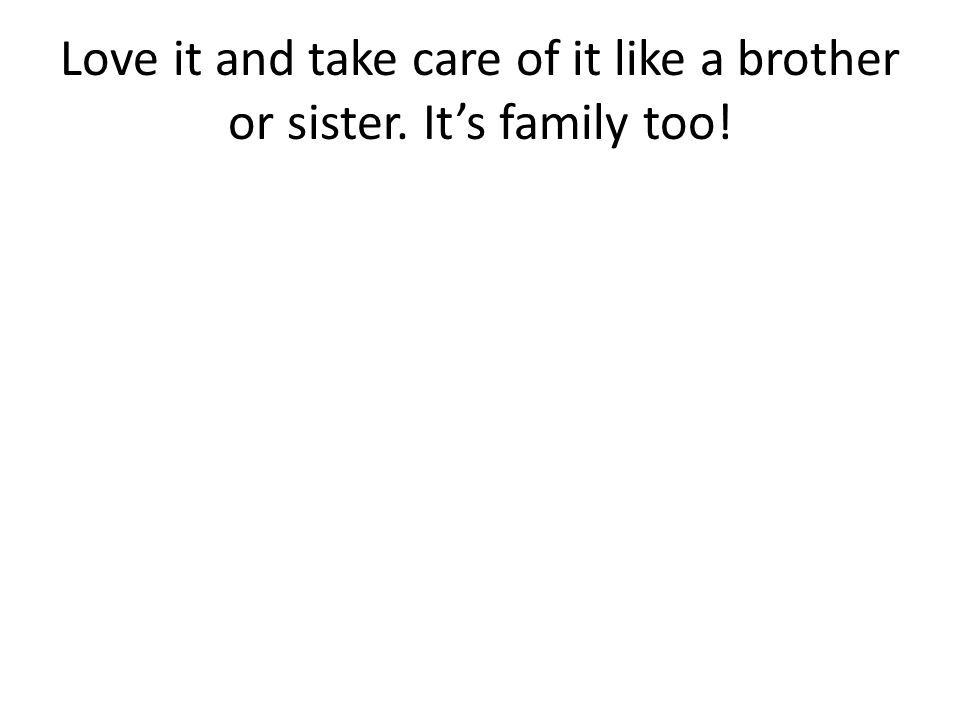 Love it and take care of it like a brother or sister. It's family too!