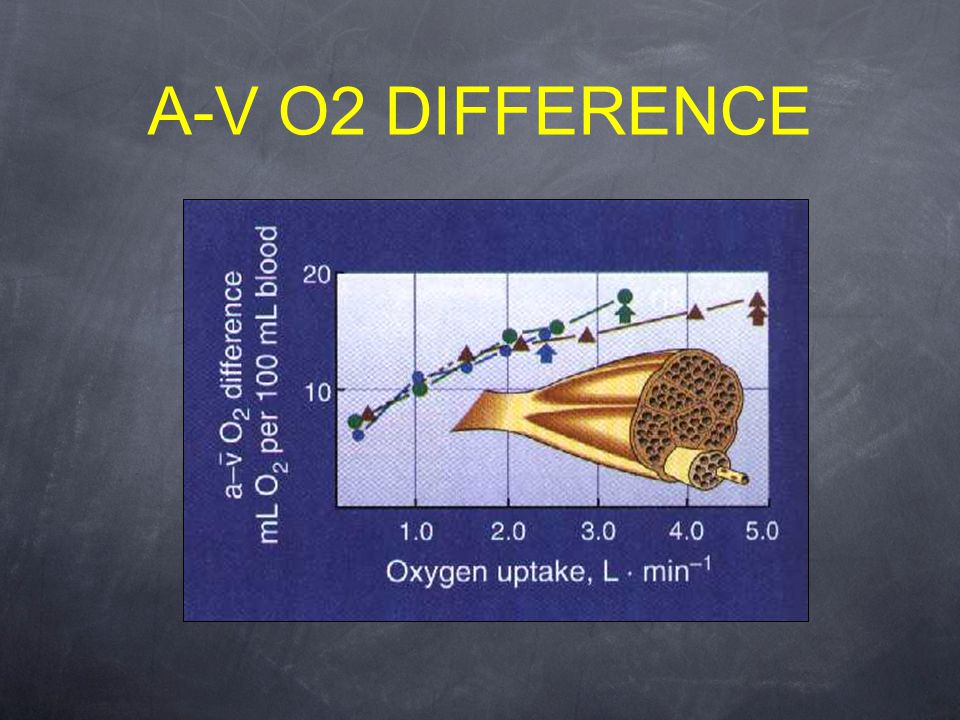 A-V O2 DIFFERENCE