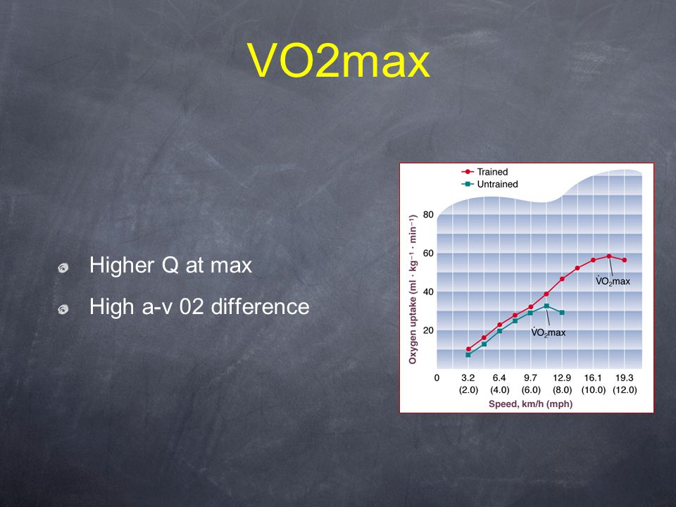 VO2max Higher Q at max High a-v 02 difference