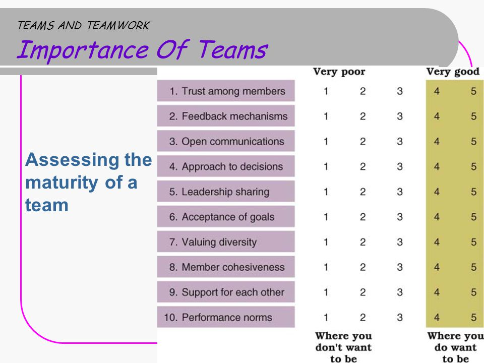 TEAMS AND TEAMWORK Importance Of Teams Assessing the maturity of a team
