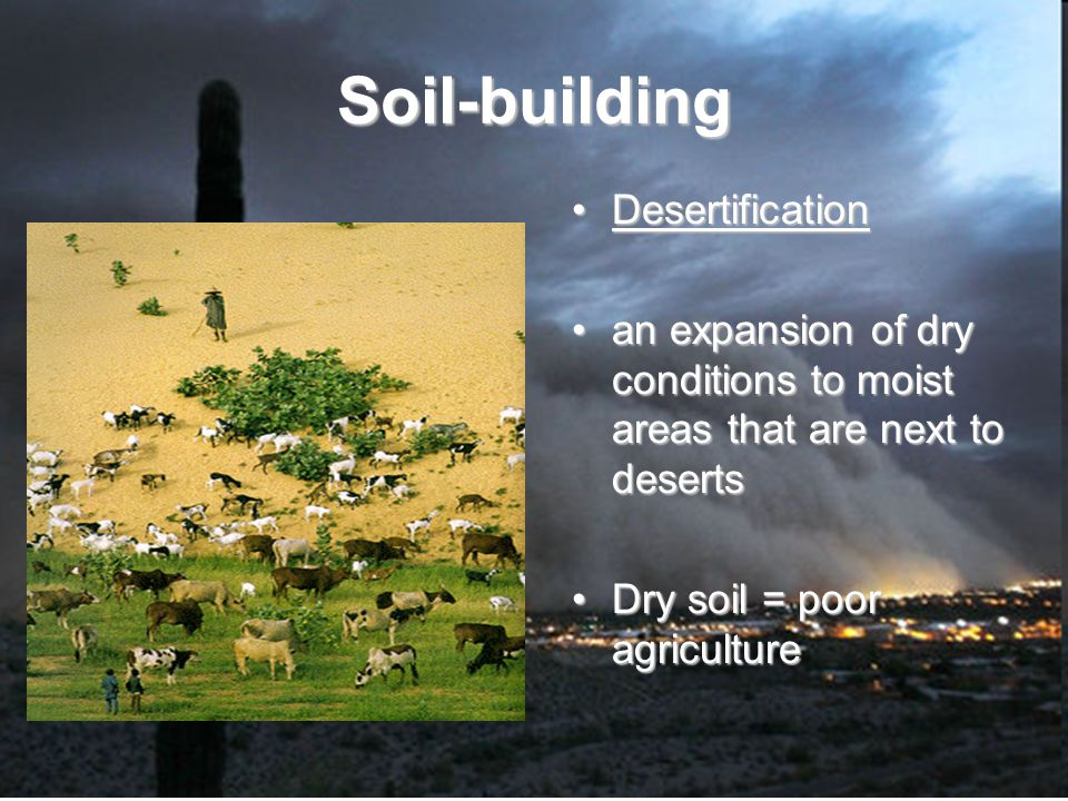 Soil-building Desertification an expansion of dry conditions to moist areas that are next to deserts Dry soil = poor agriculture