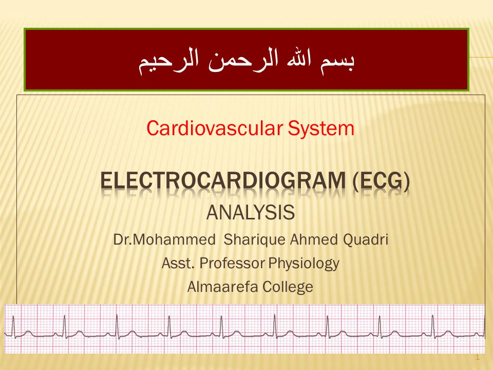 Cardiovascular System ANALYSIS Dr.Mohammed Sharique Ahmed Quadri Asst.