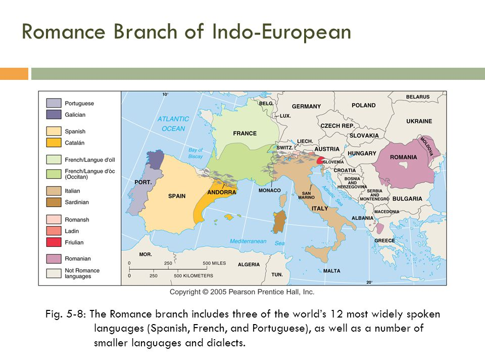 Romance Branch of Indo-European Fig.