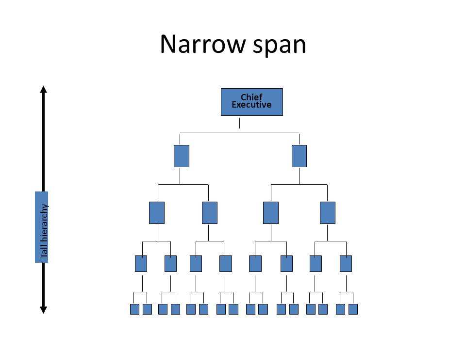 The organizing function what is organizing organizing is the 15 narrow span chief executive tall hierarchy publicscrutiny Image collections
